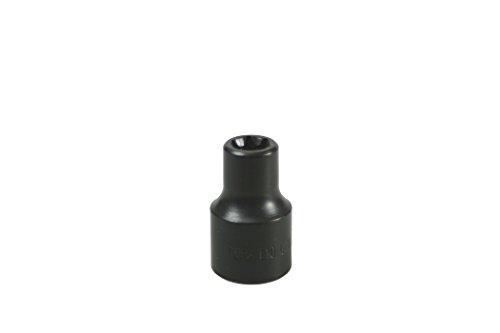 Lisle 26820 E-10 Torx Socket