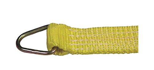 Liftall 605120 Ratchet Assembly D-Ring 2 x 30 5000 Load Hugger Poly Tiedown 100 Length 60 Width