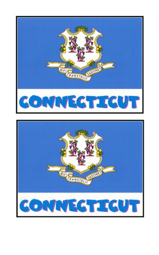 2 Souvenir Connecticut State Flag Stickers Decal Laptop Phone Locker Toolbox Wall Stocking Stuffer